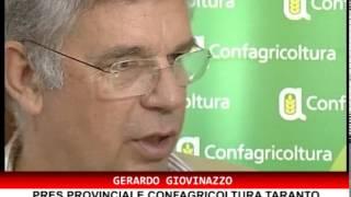 CONF STAMPA CONFAGRICOLTURA SU CARTELLE ESATTORIALI AGLI AGRICOLTORI