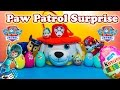 PAW PATROL Nickelodeon Paw Patrol Surprise Eggs & Basket & Miles Tomorrowland a Paw Patrol Video