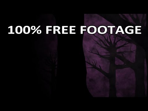 Beachfront B-roll: Spooky Trees (Royalty Free Looping Background)