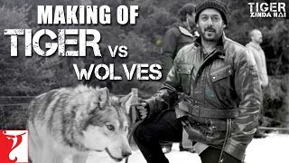 Making of Tiger vs Wolves | Tiger Zinda Hai