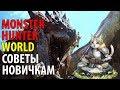 Monster Hunter World – советы новичкам! Гайд для начинающих охотников!