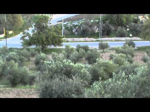 مزرعة للبيع الاردن عمان