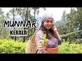 MUNNAR Hill Station | Kerala Food, Best Hotel in Munnar, Tea Plantations