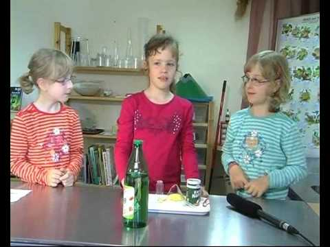 Freie Montessori Schule Main-Kinzig