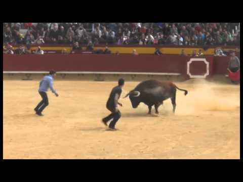 PARADA DE EL RATA Y EL BORJA EN CASTELLON