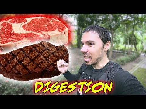 Raw Meat vs Cooked Meat: The Healthier Choice