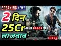 Batti Gul Meter Chalu 2nd Day Record Breaking Box Office Collection | Shahid Kapoor