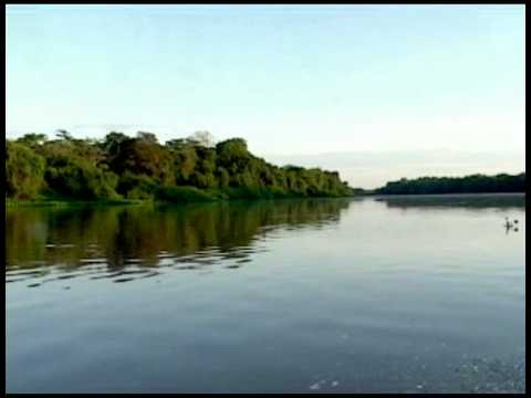 Pantanal, Mato Grosso, Brazil - Travel Information