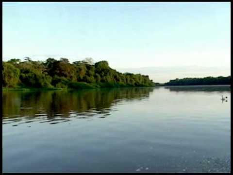 Pantanal, Mato Grosso, Brazil - Travel Information