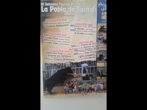 III Semana Taurina Vila de La Pobla de Farnals Especial Fernando