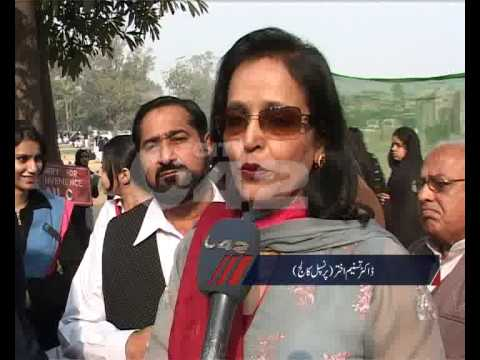 Govt Postgraduate College Art Exhibition Samanabad Pkg By Amira Abrar.flv