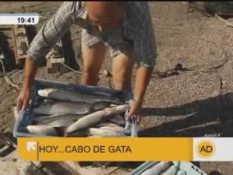 """Visitamos el Cabo de Gata, Almería, en """"Andalucía Directo"""""""