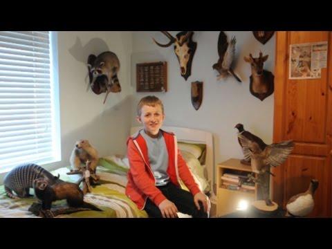 شاهد : بالفيديو طفل ب 12 من عمره هوايته تحنيط الحيوانات
