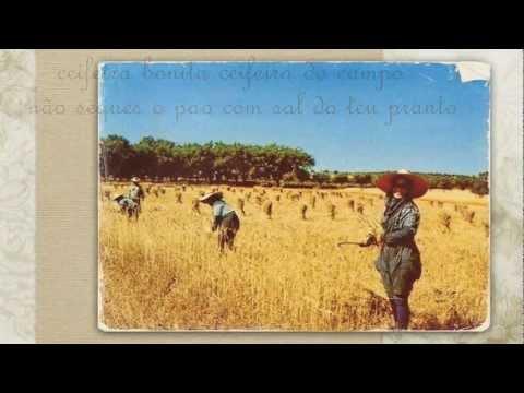Ceifeira do Alentejo - Paco Bandeira - Ceifeira Bonita - Ceifeira Linda - Luanda - ( com letra )