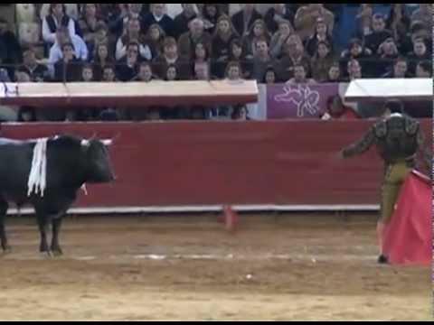 La verdad de las corridas de toros