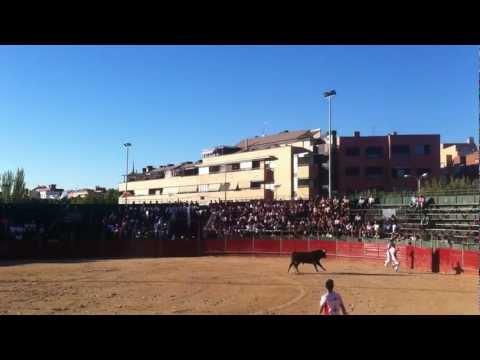 CONCURSO DE RECORTES MAJADAHONDA 2012. (LUIS HERRANZ) RECORTADOR LOCAL