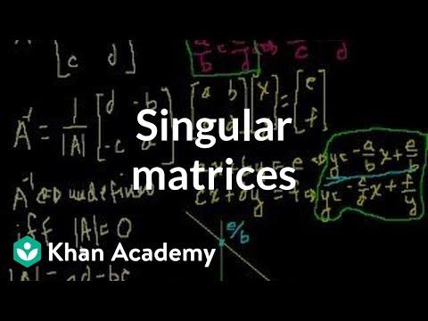 Singular Matrices