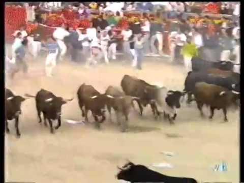 Encierro San Fermín   10 de julio de 1993 480p