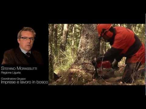 Rapporto sulle foreste della Liguria (RAFL) 2010