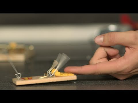 Mouse Trap Finger Challenge - The Slow Mo Guys