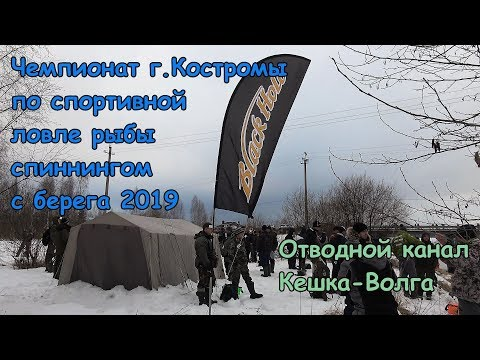 Волжские монстры? Чемпионат г.Костромы по спортивной ловле спиннингом с берега 2019