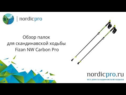 Fizan NW Carbon Pro / Палки для скандинавской ходьбы