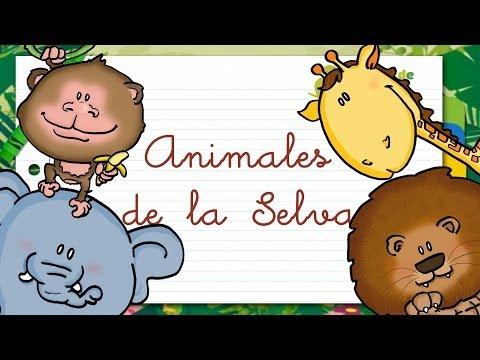 Animales de la SELVA en ESPAÑOL para niños