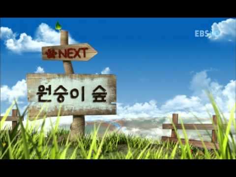 01 Backkom 2009 HDTV 720p x264 AC3 CMCT
