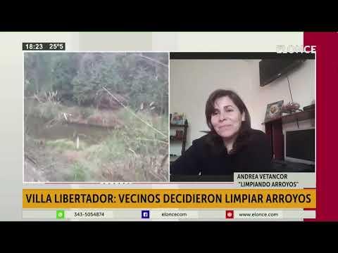 Vecinos de Libertador San Martín se autoconvocaron para limpiar los arroyos