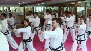 Escuelas Taekwondo Wtf Chile