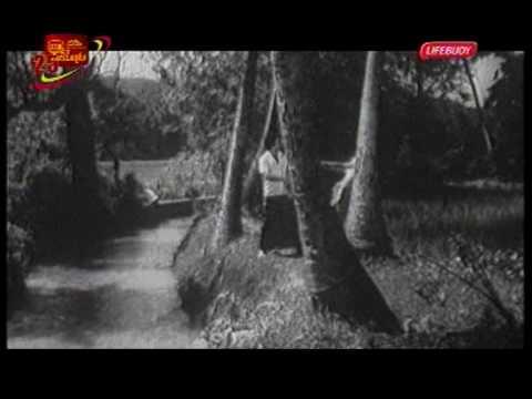 """""""Dedunen Enna"""" - Sanath Nandasiri and Latha Walpola (Wasanthaya Dawasak, 1979)"""