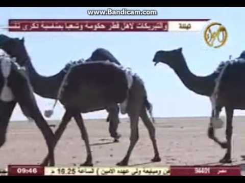 منقية عبد الهادي بن راشد ال بخيته اداء المنشد جفران المري رحمه الله