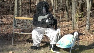 BIGFOOT BABYMAMA CAUGHT ON TAPE