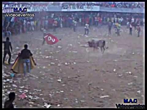 Mejor toro y mejor faena, Cotorra 2013.avi