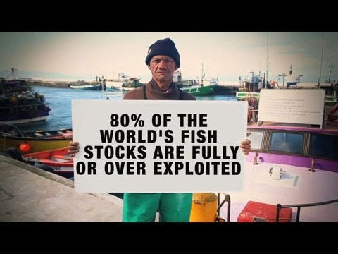 The Need for Sustainable Fisheries