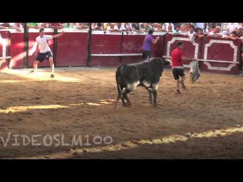 Cadreita vacas miercoles 18 julio 2012