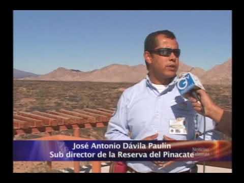 Primera entrega de reportajes sobre la reserva del Pinacate