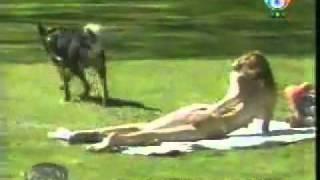 Um cachorro sai pelo parque cutucando a bunda das pessoas