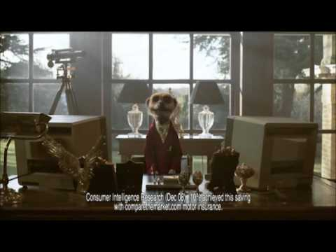 First Compare The Meerkat Advert