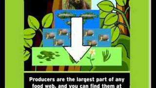 The mysteries of life, Food chain video lesson