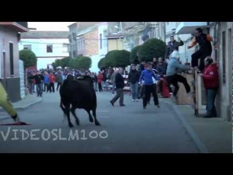 CABAÑAS de Ebro (zaragoza) encierro sabado 26 enero 2013