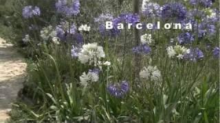 Barcelona Parc Güell Antoni Gaudi