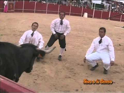 TOROS A LA CARRERA Concursos de recortes