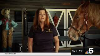 NBCDFW Horses Help America's Heroes Cope with PTSD