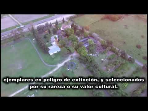<b>INFORME DRONE.</b> El Parque Botánico a punto de vender su mejor mitad