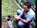 Coca Cola + Mentos (Indonesia)