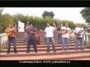 Los Rebeldes Del Swing - El Zancudo Loco (Video Oficial)