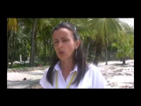 Protegiendo el Tití Cabeciblanco en Colombia