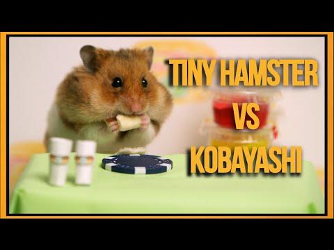 بالفيديو: شاهد مسابقة اكل الهوت دوغ بين ياباني وفأر صغير