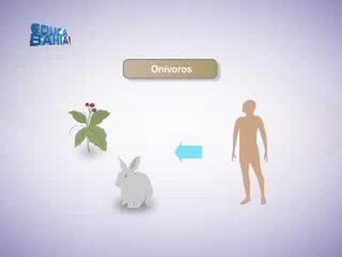 Aula 04 - Biologia - Ecologia